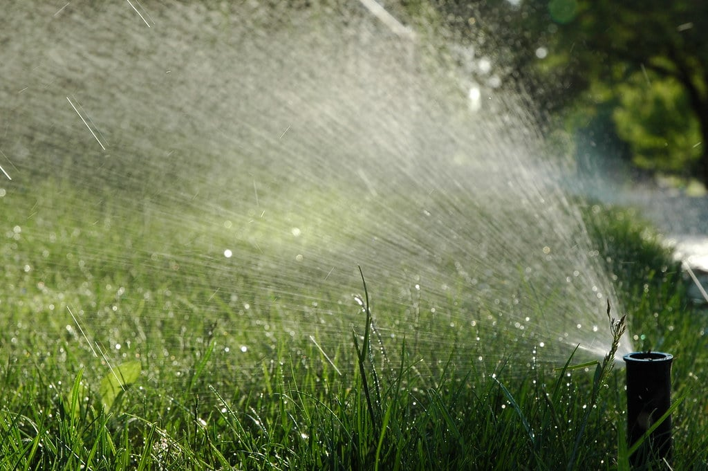 You are currently viewing Can you over water your lawn?