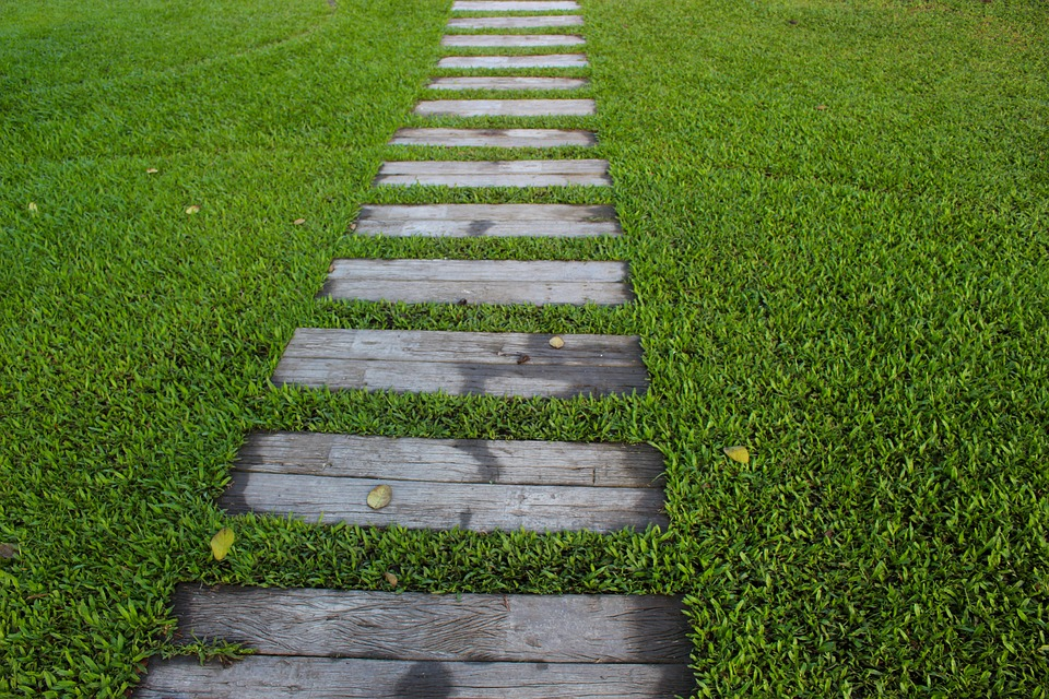 Stepping stones in lawn.