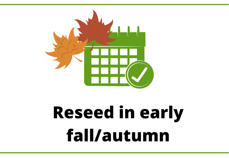 Best time to reseed is during the early fall/autumn.